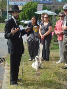 40 Days -- Rabbi Leiter