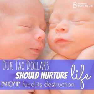 taxpayerfunding3